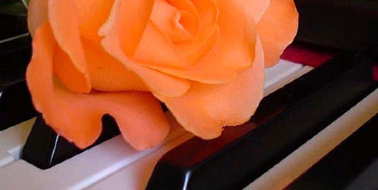 Auguri Matrimonio Con Una Canzone : Frasi matrimonio per gli auguri nel giorno dell amore le più
